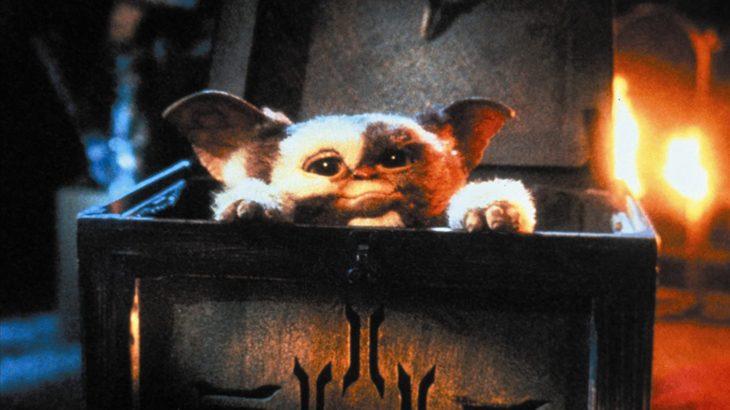 THE映画紹介『グレムリン』人間のペットに対してのエゴ的部分をパニック映画として描き出す