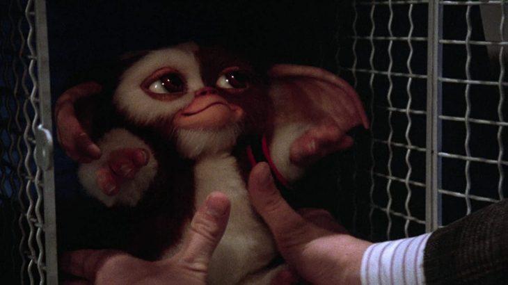 THE映画紹介『グレムリン2 新種誕生』続編という概念をブチ壊したメタ続編