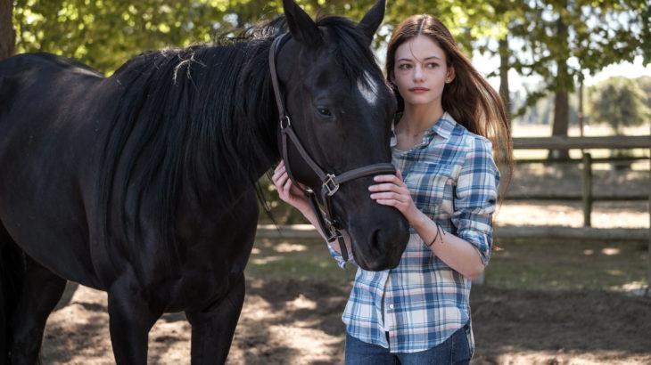 アンナ・シュウエル原作『黒馬物語』をディズニーが初映画化!Disney+で11月配信へ
